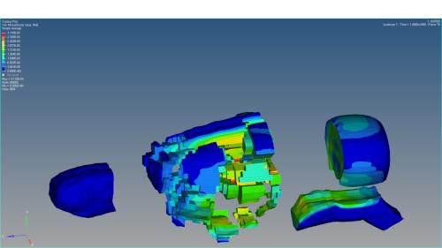 Autre exemple de modèle numérique d'un encéphale de rat